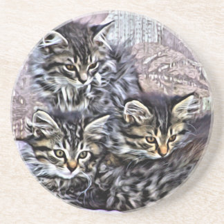 Kittens relaxing on a chair drink coasters