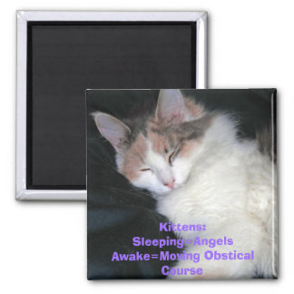 Kittens:Sleeping=AngelsAwake=Moving Obstical Co... Magnet