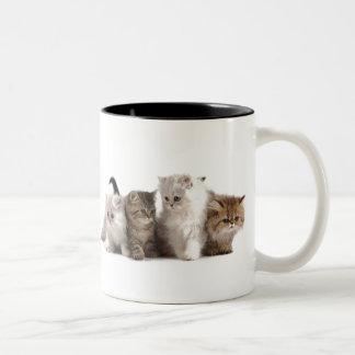 Kittens Two-Tone Coffee Mug