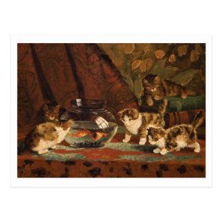 Kittens with Goldfish by Eugene Lambert Postcard