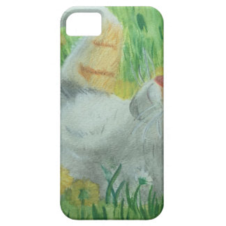 kittie_siesta case for the iPhone 5