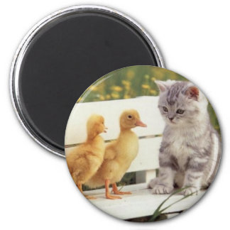 Kitties and Chicks Magnet
