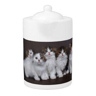 Kitties in a Row Porcelain Teapot