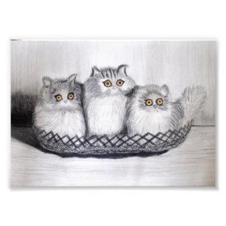 kittiess photo print