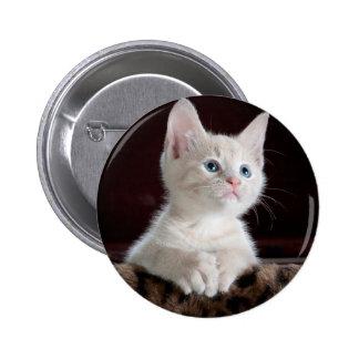 Kitty-6 2 Inch Round Button