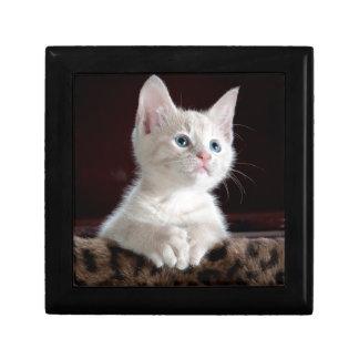 Kitty-6 Keepsake Box