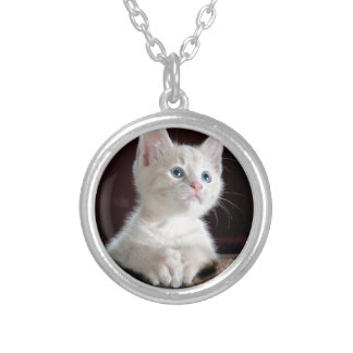 Kitty-6 Silver Plated Necklace