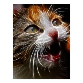 Kitty affamé carte postale