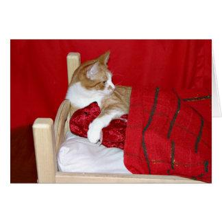 Kitty and Teddy Bear Valentine Greeting Card