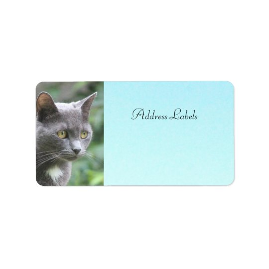 Kitty Cat Address Labels