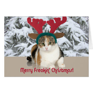 Kitty Cat & Antlers Merry Freakin Christmas Cards