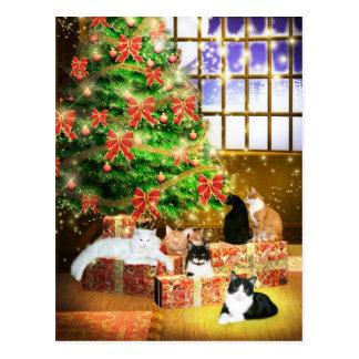 Kitty cat Christmas Postcard