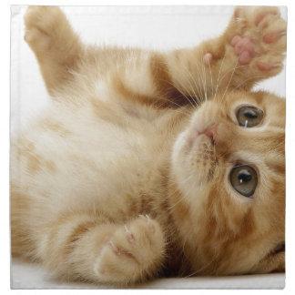 Kitty Cat Cute Item Napkin