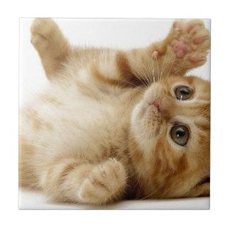 Kitty Cat Cute Item Tile