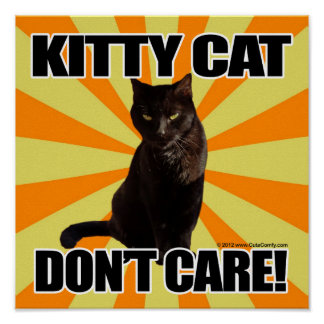 Kitty Cat Don't Care Print