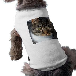 Kitty Cat Pet Clothing