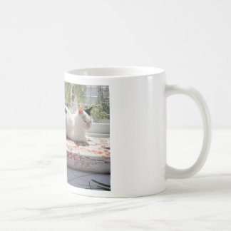 Kitty Cat Relaxing in a Sunny Window Coffee Mug