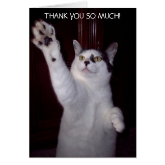 KITTY CAT THANK YOU CARD