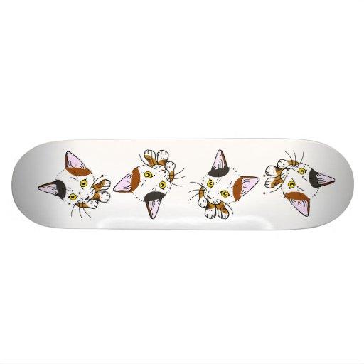 Kitty-cat , Tortoiseshell  (三毛猫) Skateboards