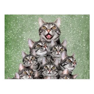 Kitty Christmas tree Postcard