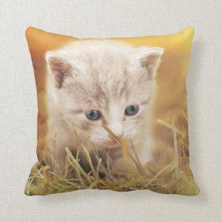 Kitty Curious Throw Pillow