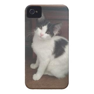 Kitty Fun! iPhone 4 Cover