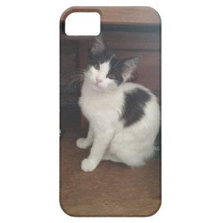 Kitty Fun! iPhone 5 Cover
