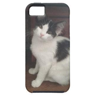 Kitty Fun! iPhone 5 Covers