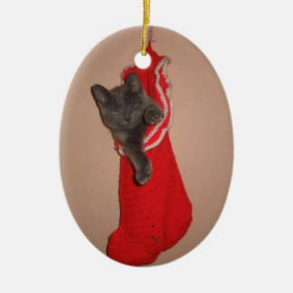 Kitty in a stocking ornament