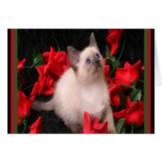 Kitty in Roses Note Cards