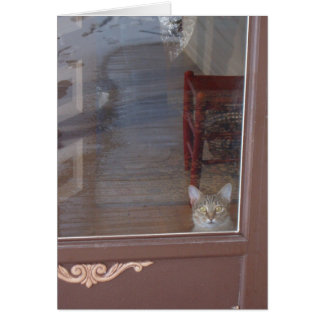 Kitty in the Doorway Card
