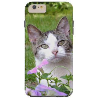 Kitty in the Flowers iPhone 6 Plus Case