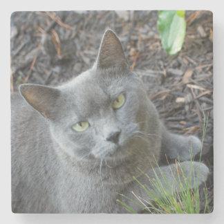 Kitty in the Garden Stone Coaster