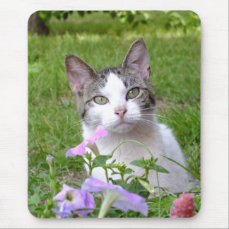 Kitty In the Petunias MousePad