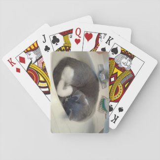 Kitty in the sink playing cards