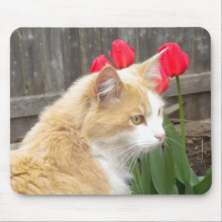 Kitty in the Tulips Mouse pad