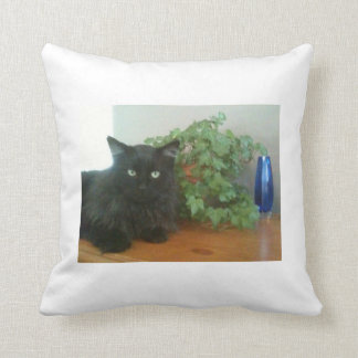 Kitty Knows Best! Throw Pillows