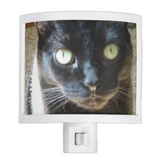 Kitty Light Nite Light