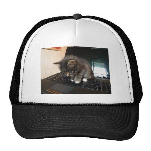 Kitty Mouse Trucker Hat