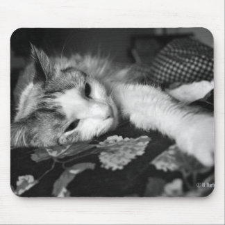 Kitty Mouse Pad Cover