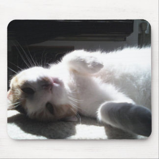 kitty mouse pad!