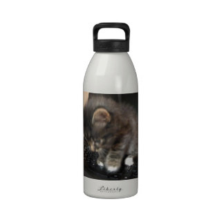 Kitty Mouse Reusable Water Bottles