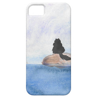 Kitty On Stepping Stones iPhone 5 Cases