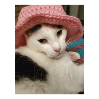 Kitty pose letterhead