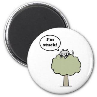 Kitty Stuck In Tree Magnet