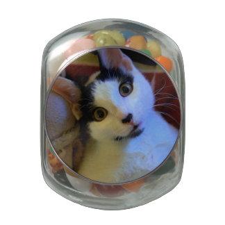 Kitty Sweet Dreams Glass Jars