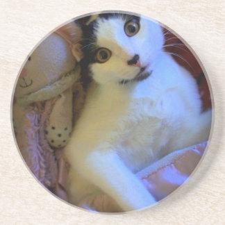 Kitty Sweet Dreams Drink Coasters