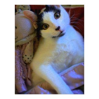Kitty Sweet Dreams Personalized Letterhead