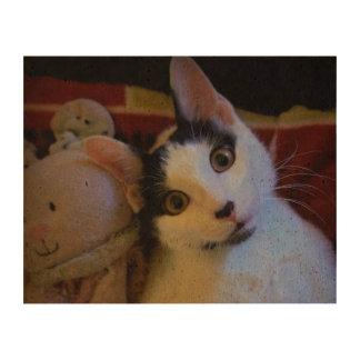 Kitty Sweet Dreams Photo Cork Paper