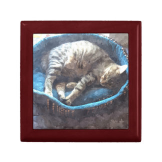 Kitty Takes a Nap, Watercolor Tabby Cat Sleeping Gift Box